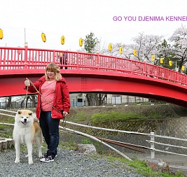 GO YOU DJENIMA KENNEL