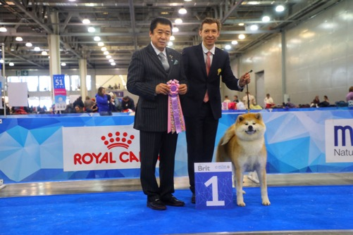 EURASIA 2019 MOSCOW BOB, BOB JUNIOR, BOB PUPPY MALE