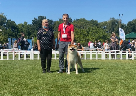 "IDS CACIB – FCI «Dnepr Dog Show – 2020» and ""Yuri Ovots Cup - 2020"""