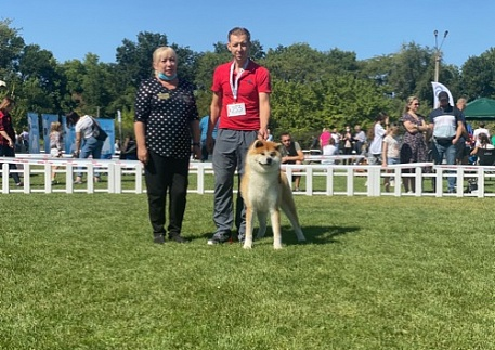 "IDS 2*CACIB FCI «Dnepr Dog Show – 2020» and ""Yuri Ovots Cup - 2020"""